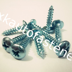 China Large flat head  Self tapping screw supplier